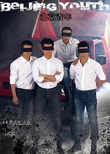 北京青年全集优酷_《北京青年》在线观看完整版 - 国产剧 - 奇领yy6080影院