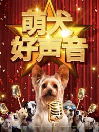 萌犬好声音 系列